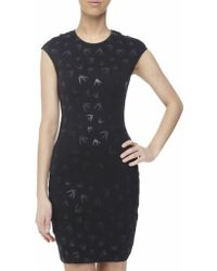 McQ by Alexander McQueen Swallow Print Mini Dress - Lyst