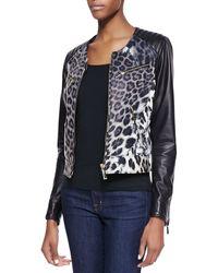 Just Cavalli Leopard Print Degrade Leather Moto Jacket - Lyst