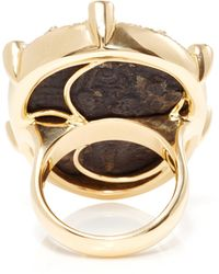 Pamela Huizenga - 18K Gold Ring With Trilobite Fossil, Natural Black Diamonds, And A White Diamond Frame - Lyst