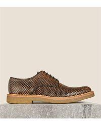 Dries Van Noten Snake-Print Derby Shoes - For Men - Lyst