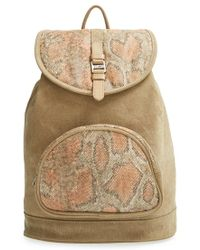 TOMS | 'departure' Print Canvas Backpack | Lyst
