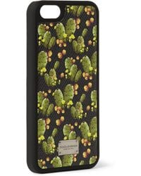 Dolce & Gabbana Cactus-print Leather Iphone Case - Lyst