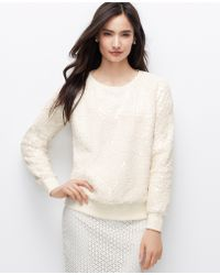 Ann Taylor Petite Cracked Ice Sweatshirt - Lyst