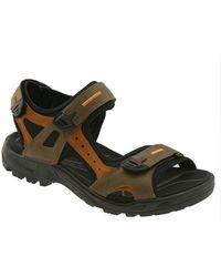 Ecco 'Yucatan' Sandal brown - Lyst