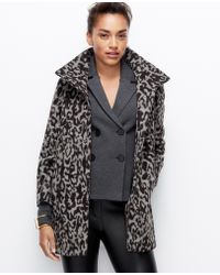 Ann Taylor Animal Exotic Topper - Lyst