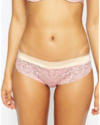 Evollove - Dulce Candy Bikini Brief - Lyst