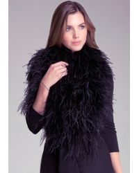 Bebe Ostrich Feather Wrap - Lyst