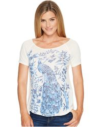 Lucky Brand - Shaded Peacock Graphic Tee - Lyst