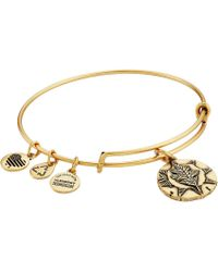 ALEX AND ANI - Ruler Of The Woods - Kingdom Of Summer Oak Bangle - Lyst