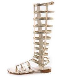 Stuart Weitzman Gladiator Sandals - Cava - Lyst