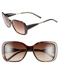 Burberry 'Trench Knot' Square Sunglasses - Dark Havana brown - Lyst