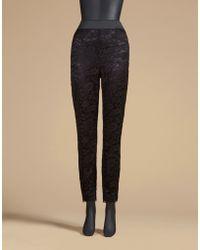 Dolce & Gabbana | Leggings In Lace | Lyst