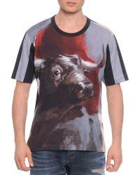 Dolce & Gabbana Bull-Print Short-Sleeve Tee - Lyst