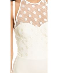 Willow - Dot Lace Bodysuit - Lyst