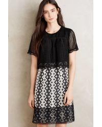 Anna Sui | Marne Dress | Lyst