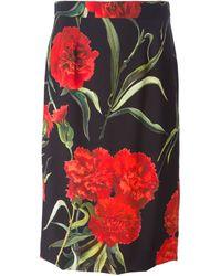 Dolce & Gabbana Carnation Print Skirt - Lyst