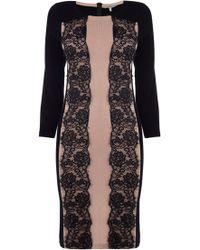 Coast Maz Knit Dress - Lyst