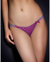 Agent Provocateur Purple Hyacinth Thong - Lyst