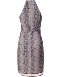 Zimmermann Sleeveless Snake Print Dress animal - Lyst