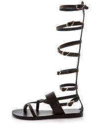 Ancient Greek Sandals Alethea High Gladiator Sandals - Black - Lyst