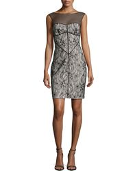 Halston Heritage Sleeveless Meshinset Lace Dress - Lyst
