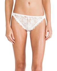 Lonely Flora Brief - Lyst