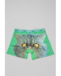 Toddland - Crosseyed Cat Boxer Brief - Lyst