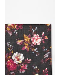French Connection Gardini Floral Scarf - Lyst