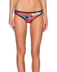 Seafolly Field Trip Scuba Hipster Bikini Bottom blue - Lyst