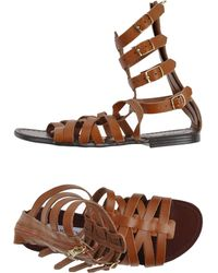Steve Madden Brown Sandals - Lyst
