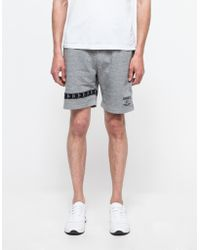 Need Supply Co. Band Shorts - Lyst
