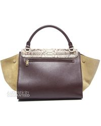 Celine Pre-Owned Python And Leather Tri Color Trapeze - Lyst