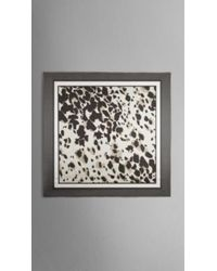Burberry Animal Print Modal Silk Square - Large - Lyst