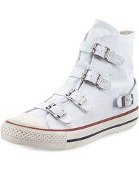 Ash Virgin Buckled Canvas Sneaker - Lyst