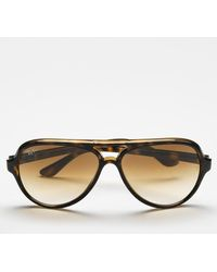 Ray-Ban Brown Cats Sunglasses - Lyst