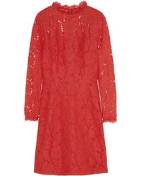 Temperley London Coco Cotton Blend Lace Dress - Lyst