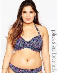 Marie Meili - Plus Size Bikini Bottom - Lyst