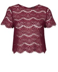 Topshop Womens Scallop Lace Tee - Mulberry - Lyst