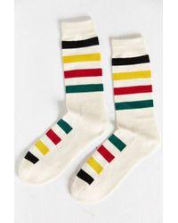 Pendleton National Park Crew Sock - Lyst