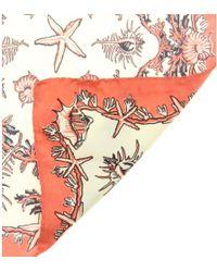 Valentino Printed Silk Scarf - Lyst