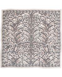 Alexander McQueen Animal-Print Silk Chiffon Scarf - Lyst