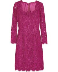 Dolce & Gabbana Guipure Lace Dress - Lyst