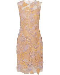 Mary Katrantzou Swiss Lace-Appliquéd Tulle Dress - Lyst