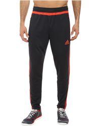Adidas Tiro 15 Training Pant - Lyst
