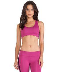 Koral Activewear Divine Sports Bra - Lyst