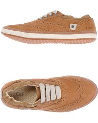 Caterpillar   Low-tops & Trainers   Lyst