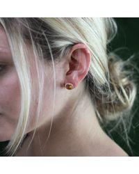 Dana Rebecca Anna Beth Citrine Stud Earrings