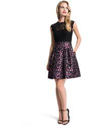 Cynthia Steffe Lace Sheath Dress - Lyst