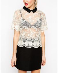 Asos Premium Organza Lace T-Shirt With Contrast Collar - Lyst