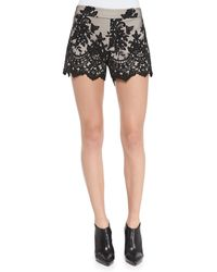 Alice + Olivia Alice Olivia Contrast Lace Slim Scalloped Shorts - Lyst